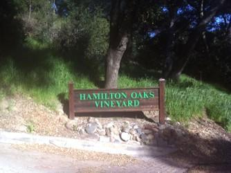 Wineries in Orange County?